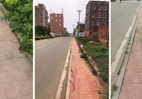 加强农村人居环境整治,法治建设生态宜居的福清义庄村